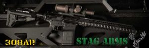 STAG ARMS STAG 10 308 AR