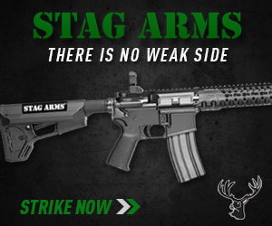 Stag Arms 308 AR Rifles For Sale